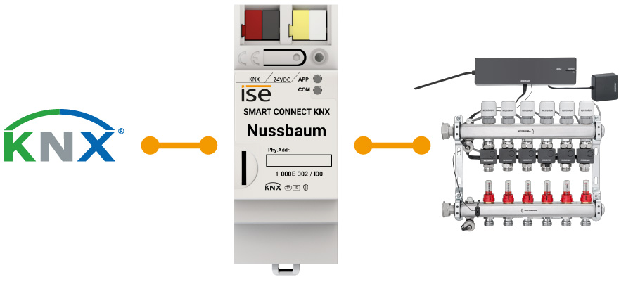 Nussbaum infographic